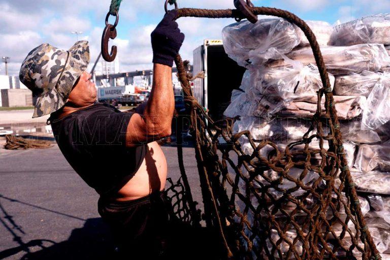 Realizar n capacitaciones para disminuir accidentes de trabajo en el puerto el marplatense - Trabajo en el puerto ...